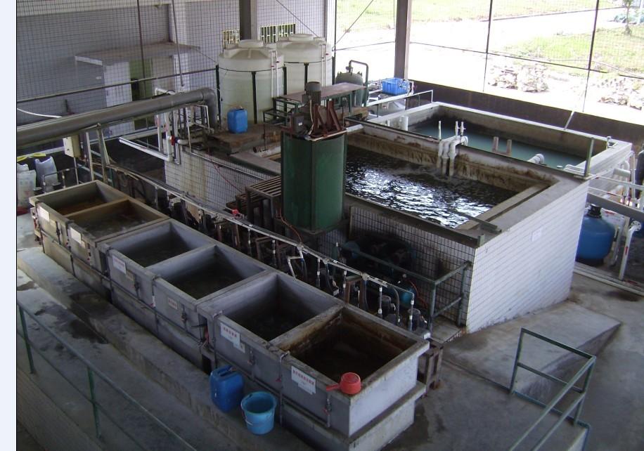 污水处理后氨氮超标怎么处理
